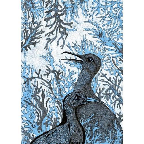 Niebieskie Ptaki